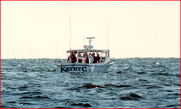 Bunky 39 s charter boats the kathy c charter boat fishing for Solomons island fishing report